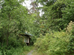 orchardstreet1