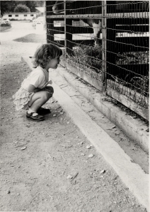 Like all kids, I loved the zoo when I was little.