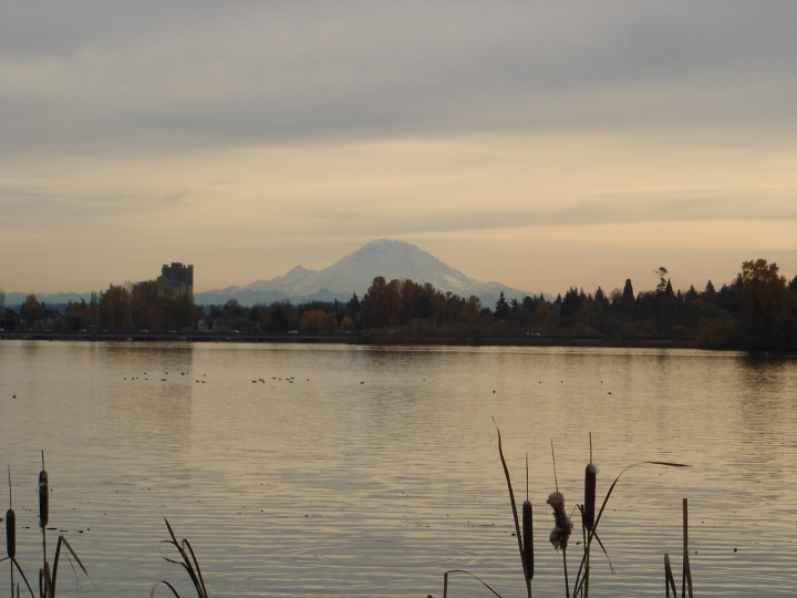 Mt. Rainier from the Montlake Fill, Seattle