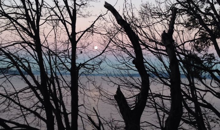 Moonset Thanksgiving Day, 2015